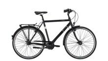 Citybike Excelsior Trekking