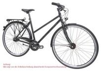 Citybike Maxcycles Steel Lite Trapez 30 G Shim. XT Mix