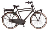 E-Bike Cortina E-U4 Transport Raw Herrenrad