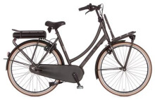 E-Bike Cortina E-U4 Transport RAW Damenrad
