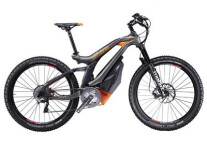 E-Bike M1-Sporttechnik Spitzing Plus Pedelec orange