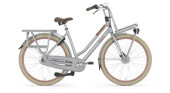Citybike Gazelle HeavyDutyNL