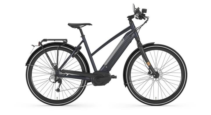 E-Bike Gazelle CityZen Speed 2019