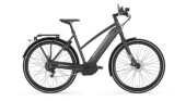 E-Bike Gazelle CityZen Speed 380 M