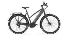 E-Bike Gazelle CityZen Speed 380 M