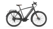 E-Bike Gazelle CityZen Speed 380 H