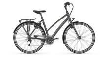 Trekkingbike Gazelle Chamonix S30 M Eclipse