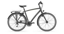 Trekkingbike Gazelle Chamonix S30 H Eclipse