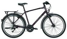 Trekkingbike Contoura Caldera