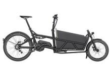 E-Bike Riese und Müller Load 60 vario HS