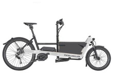 E-Bike Riese und Müller Packster 40 touring