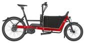 E-Bike Riese und Müller Packster 40 vario