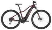 E-Bike Bergamont E-Revox FMN