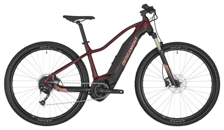 E-Bike Bergamont E-Revox FMN 2020