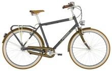 Citybike Bergamont Summerville N7 FH Gent