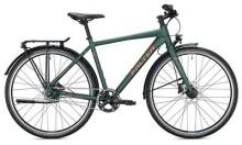 Urban-Bike FALTER U 6.0 Herren / dark green-gold