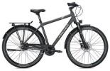 Citybike Falter C 4.0 PLUS Herren / titanium-blue