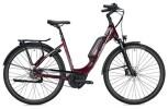 E-Bike Falter E 9.5 FL Wave / bordeaux