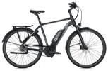 E-Bike FALTER E 9.5 FL Herren / black