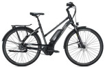 E-Bike FALTER E 9.5 FL Trapez / black