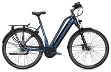 E-Bike Falter E 9.8 RT PLUS / dark blue