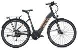 E-Bike Falter E 9.8 KS Wave / black