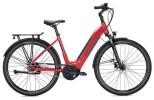 E-Bike Falter E 9.8 RT Wave / dark red