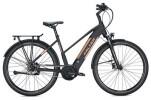 E-Bike FALTER E 9.8 FL Trapez / black