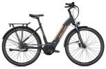 E-Bike Falter E 9.8 RT Wave / black