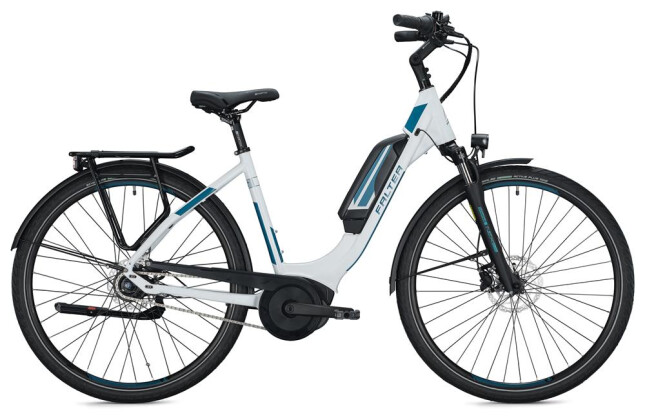 E-Bike FALTER E 9.0 RT 500 Wave / white 2020