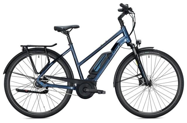 E-Bike Falter E 9.0 FL 500 Trapez / dark blue-black 2020