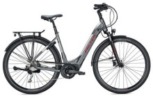 E-Bike FALTER E 8.9 Wave / grey-silver