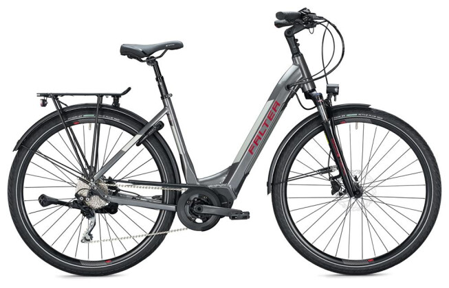 E-Bike Falter E 8.9 Wave / grey-silver 2020