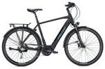 E-Bike FALTER E 8.9 Herren / black-black