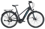 E-Bike Falter E 8.9 Trapez / black-black