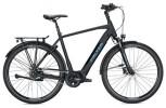 E-Bike FALTER E 8.8 RT Herren / black-black