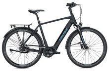 E-Bike FALTER E 8.8 RT Herren / black-black