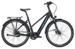 E-Bike FALTER E 8.8 RT Trapez / black-black