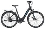 E-Bike FALTER E 8.8 RT Wave / black-black