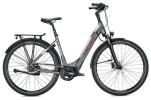 E-Bike FALTER E 8.8 FL Wave / grey-silver
