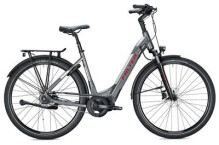 E-Bike FALTER E 8.8 FL Wave / grey-silver