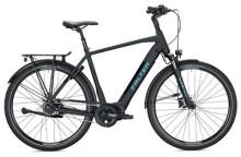 E-Bike FALTER E 8.8 FL Herren / black-black