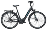 E-Bike FALTER E 8.8 FL Wave / black-black