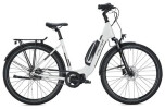E-Bike FALTER E 8.2 RT 500 / grey