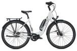 E-Bike FALTER E 8.2 FL 500 / grey