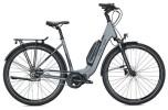 E-Bike FALTER E 8.2 RT 400 / anthracite-grey