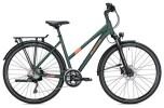 Trekkingbike Morrison T 6.0 Trapez / dark green-copper