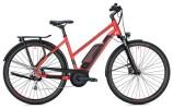 E-Bike Morrison E 6.0 500 Trapez / red