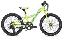 Kinder / Jugend MORRISON MESCALERO X20 Y-Lite / neon yellow-dark blue
