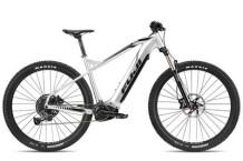 E-Bike Fuji Ambient Evo 29 1.3
